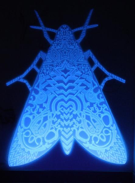 UV-pix_20120521_170