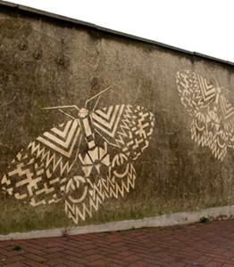 zeroh_ thumb_Hastings Moth Project