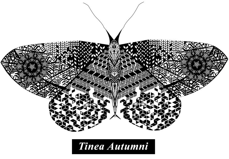 zeroh_Autumn-Moth
