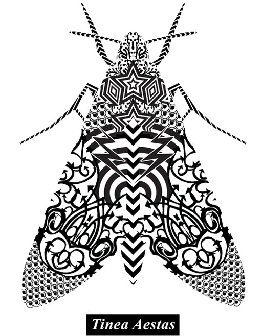 zeroh_Summer-Moth